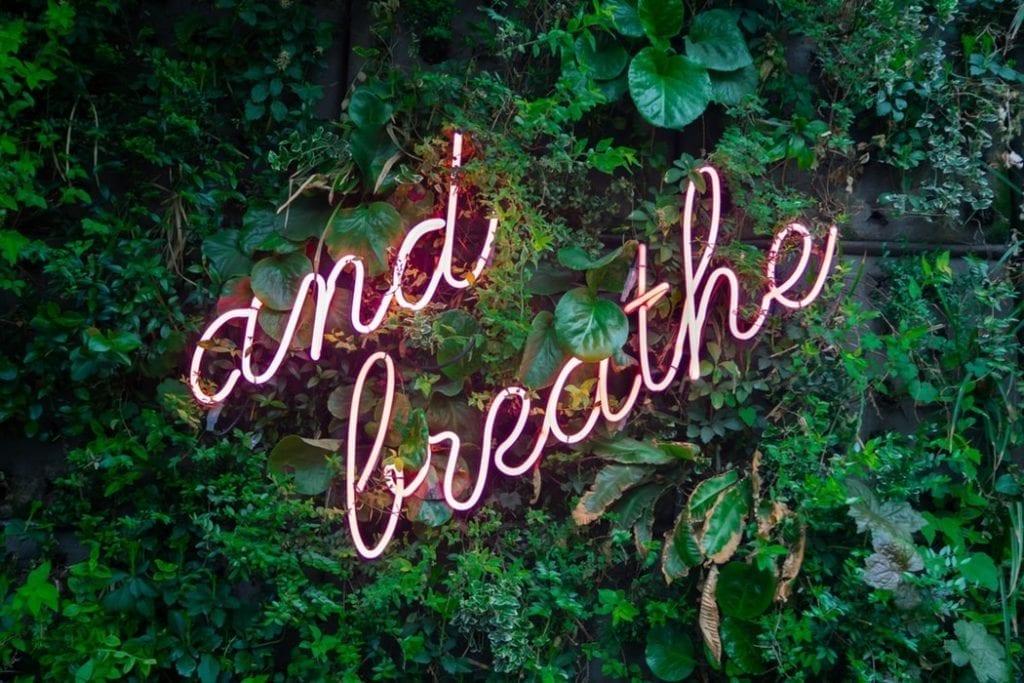 Take a break and breathe